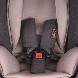 Mountain buggy protect infant carrier